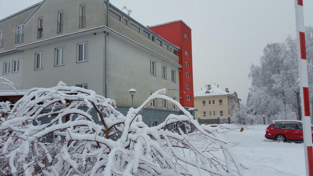 www.apartmany-jesenik.cz