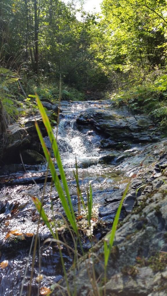 Studený potok je opravdu studený :-)
